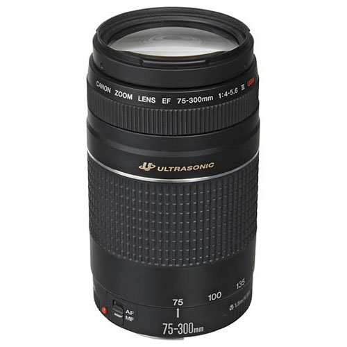 Canon zoom EF 75-300mm III USM